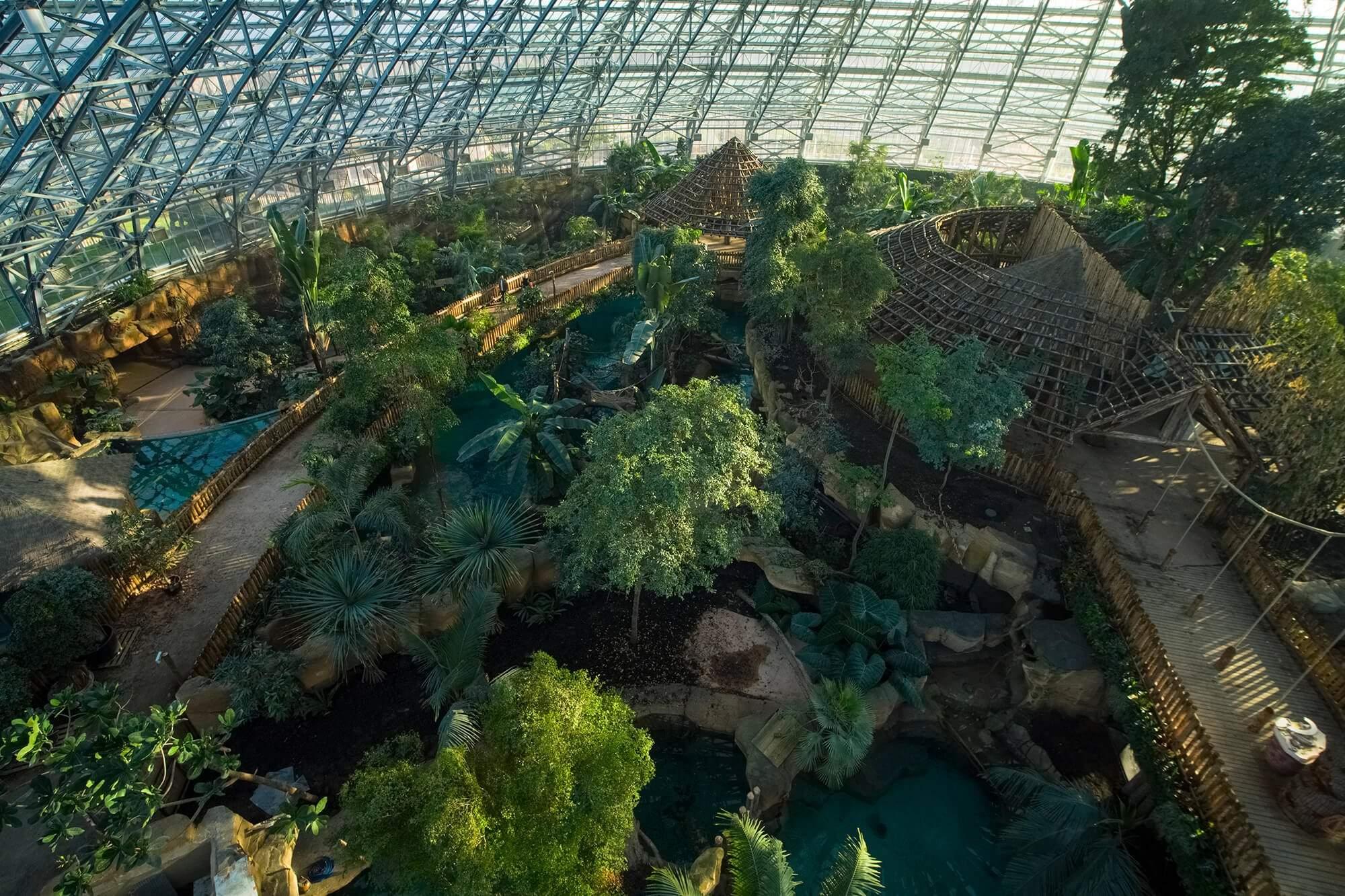 Le dôme équatorial - ZooParc de Beauval