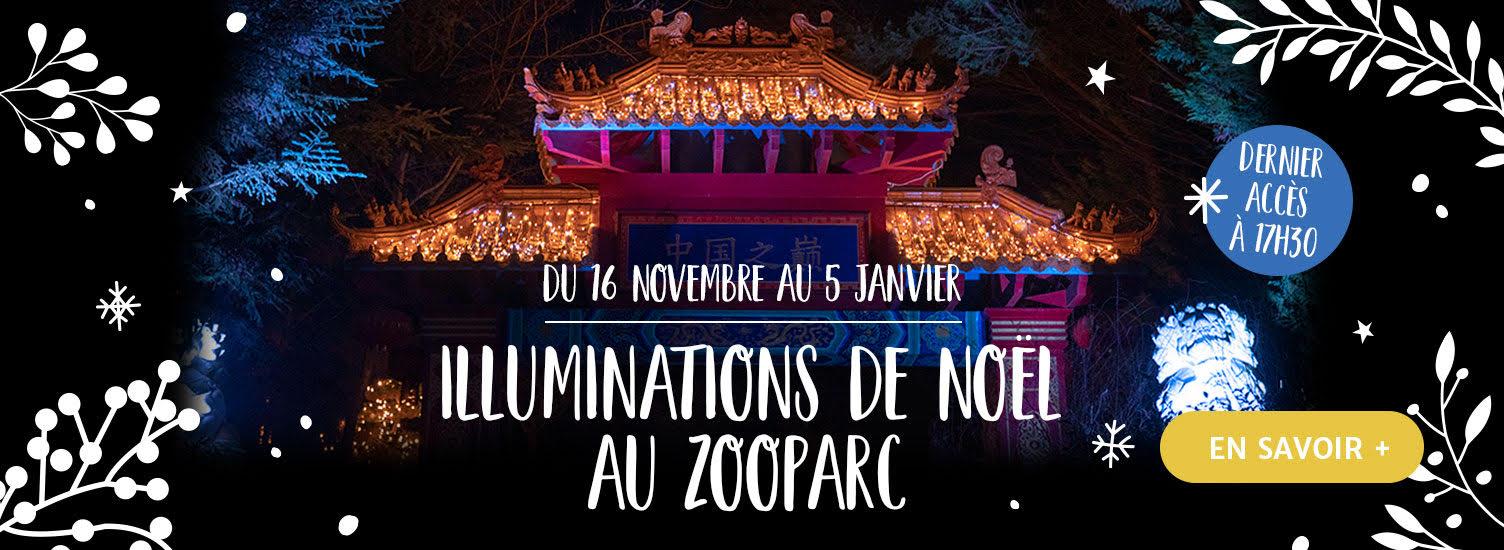 Illuminations de Noël 2019 - ZooParc de Beauval